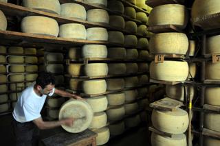 SIM_51 produzione del formaggio - il Grana Padano