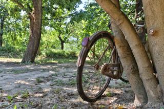 in pianura si va in bicicletta