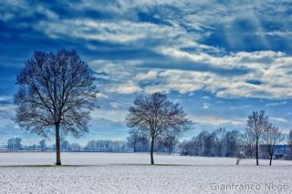 inverno di pianura